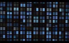 Art Basel video Brian Alfred