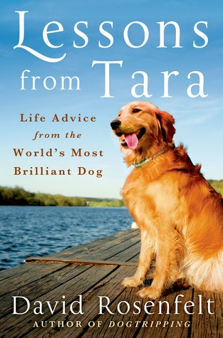 Lessons-from-Tara