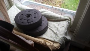 Weights in Suction Cup Cat Bed