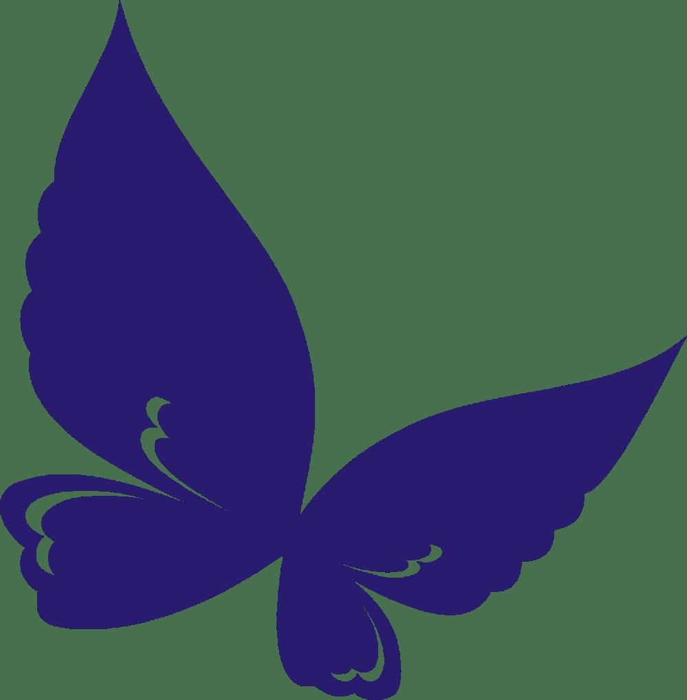 medium resolution of butterfly