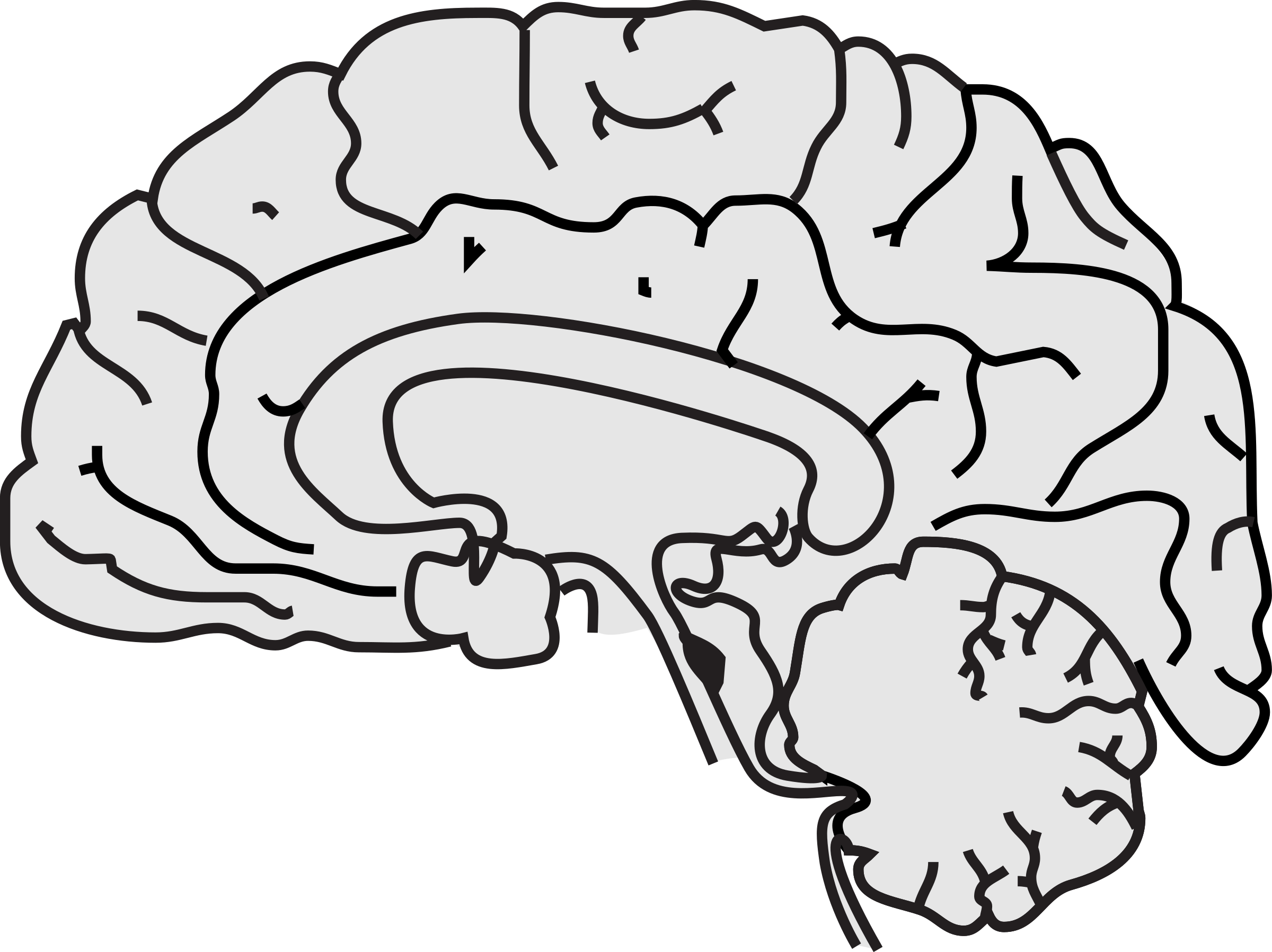 easy brain diagram 3 phase wiring clipart simple