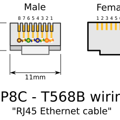 Krone Rj12 Wiring Diagram Toilet Repair Parts Clipart Rj45 Connectors