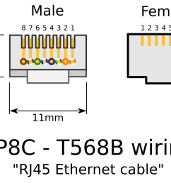clipart rj45 connectors rj45 to db9 straight serial rj45 to ethernet adapter [ 2400 x 1642 Pixel ]