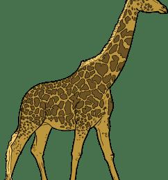 giraffe [ 1872 x 2400 Pixel ]