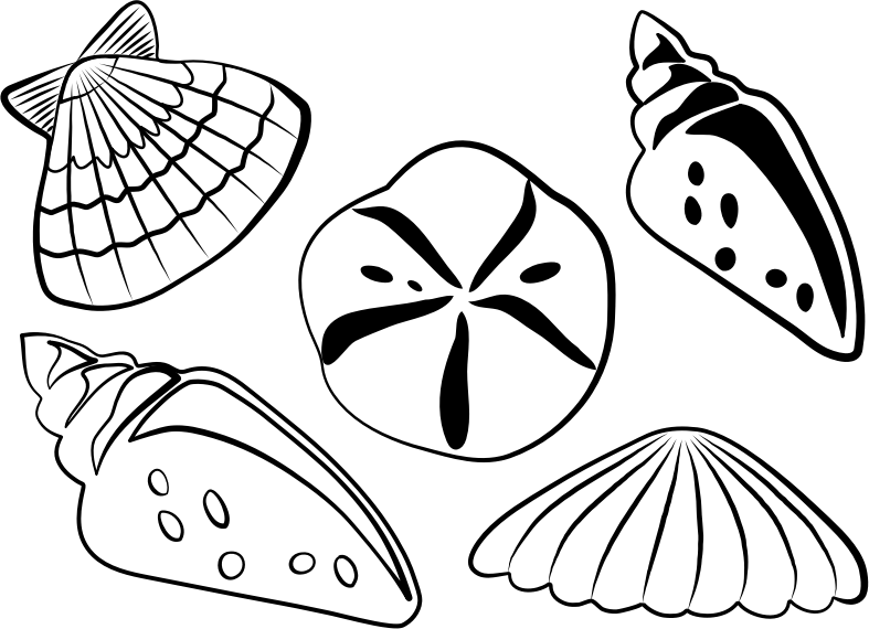 Seashore Cartoon Vector