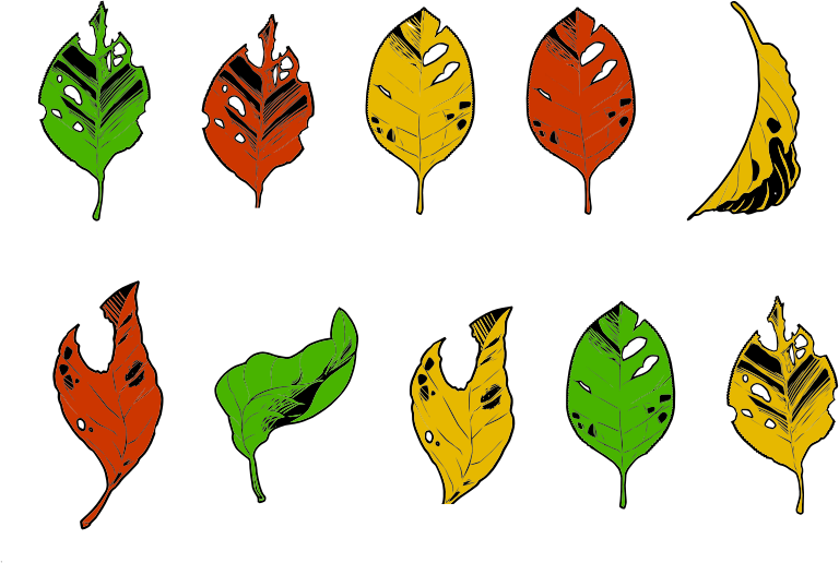 Clipart Less Than Perfect Autumn Leaves