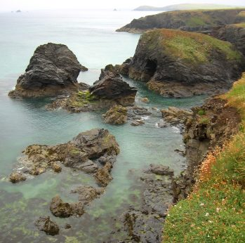 Minnows Islands, Porthcothan