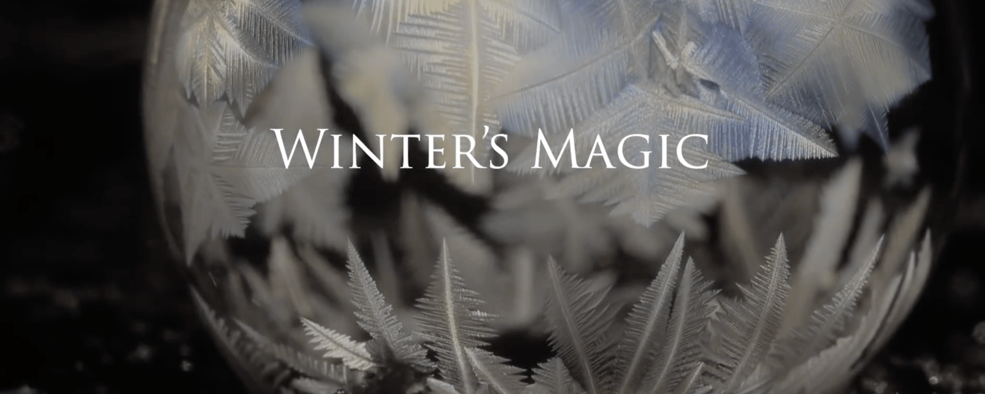 Winter's Magic. Screenshot of the title screen of the gorgeous short film by Don Komarechka https://youtu.be/mLcmeEL2SYs