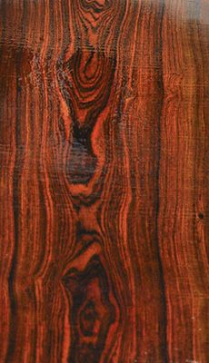 77ba84a71196f0aaa8870c7683238d48--wood-types-wood-grain