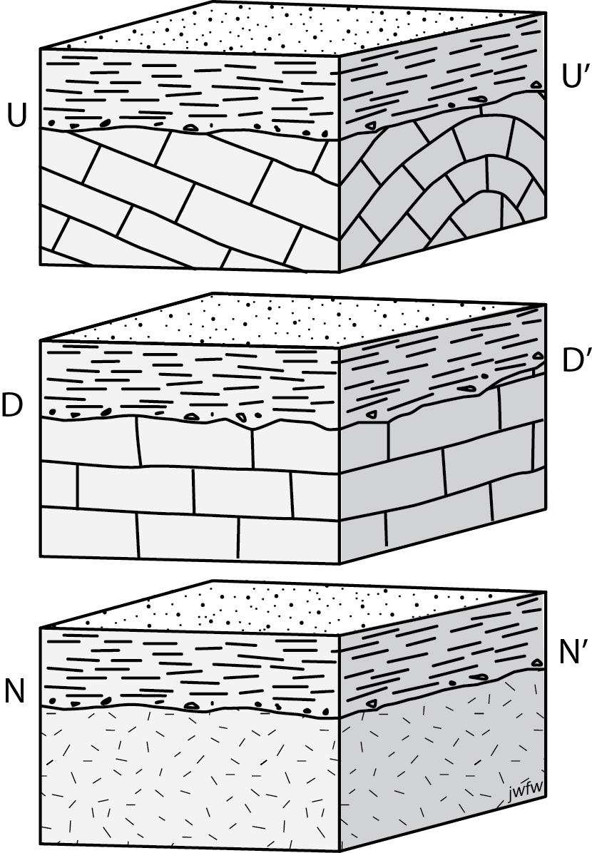 C. Primary Structures