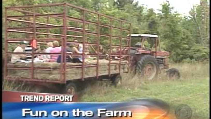 Hull O Farms for Sale