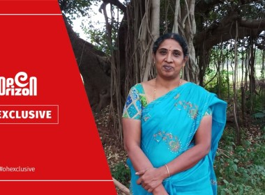 300-drumstick-trees-on-three-acres-sukanti-cultivated-alone