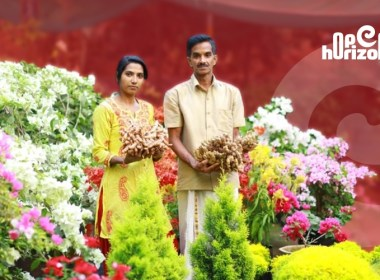 nursery-based-innovative-activities-of-a-young-farmer-couple-from-kerala