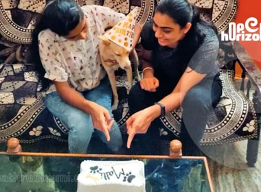 project-for-the-adoption-of-street-dogs - a-flourishing-humanity