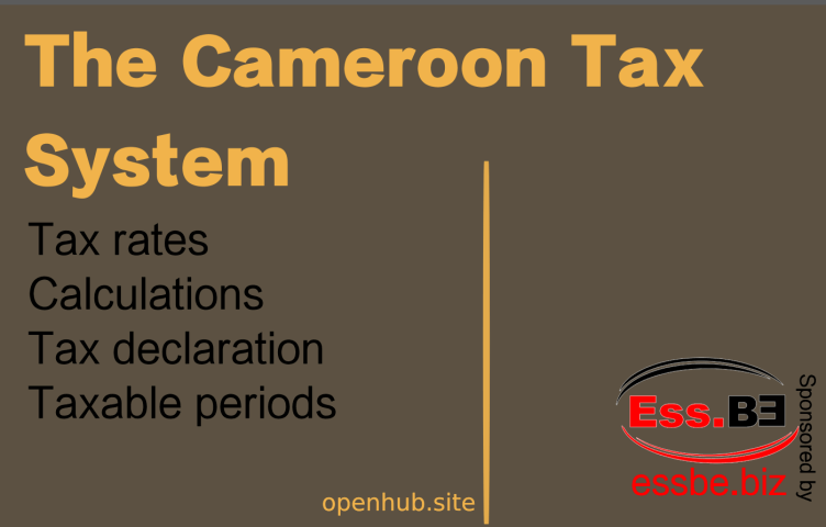 Cameroon tax system