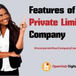 characteristics of a private company