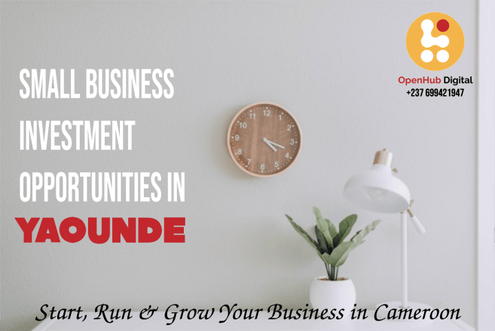 Small Business Investment Opportunities in Yaounde