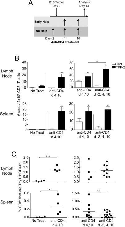 CD4 T cell help is not required for robust primary CD8 T