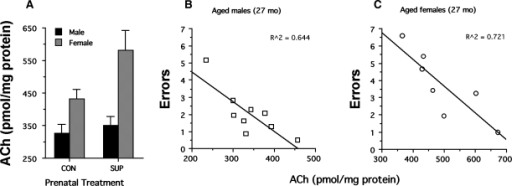Biochemical measures of ACh activity in the hippocampus as