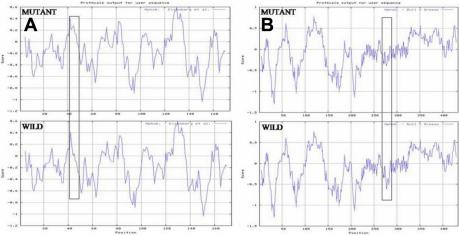 f8:Mutation screening and genotype phenotype correlation
