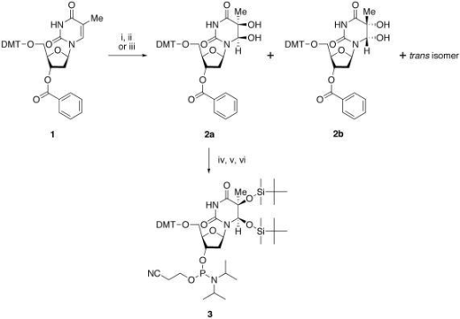 Synthesis of the phosphoramidite building block of (5S