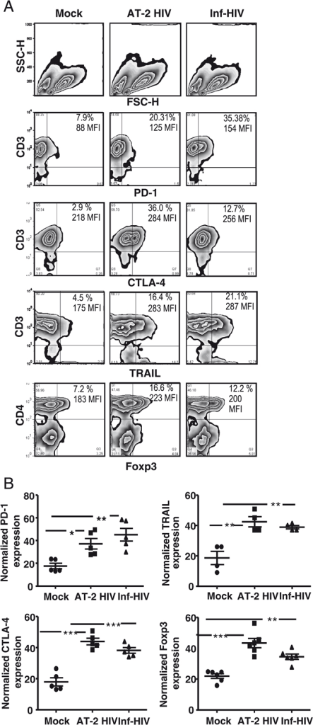 T cells activated and primed by HIV-1-exposed DC upregu