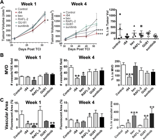 Anti-tumor and anti-vascular effects of VEGF pathway in