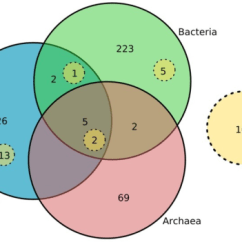 Venn Diagram Of Bacteria And Archaea 92 S10 Stereo Wiring Rna Family Distribution Taxonomic Infor Open I Information Attached To Embl Derived Rfam Annotations