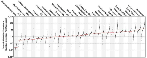 The prevalence of somatic mutations across human cancer
