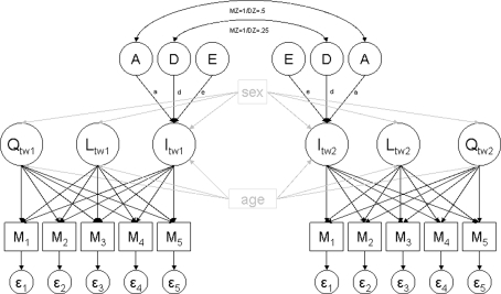 Twins Genetic Diagram, Twins, Get Free Image About Wiring