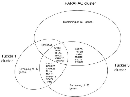Venn diagram of k-means clustering results for all thre