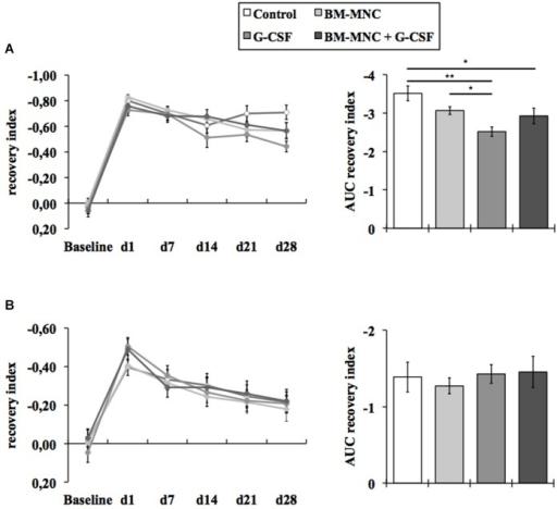 Assessment of neurological deficits. Somatosensory reco