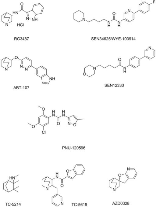 f4-ijms-13-02219:Alpha7 Nicotinic Acetylcholine Receptor