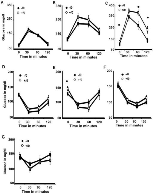 Glucose tolerance test (GTT) and Insulin tolerance test