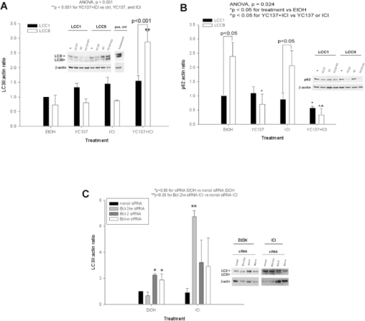 pone-0008604-g003:Co-Inhibition of BCL-W and BCL2 Restores