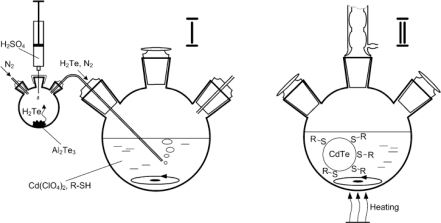Schematic of CdTe synthesis using aqueous method [16