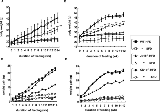 Body weight and weight gain of three strains of mice fe