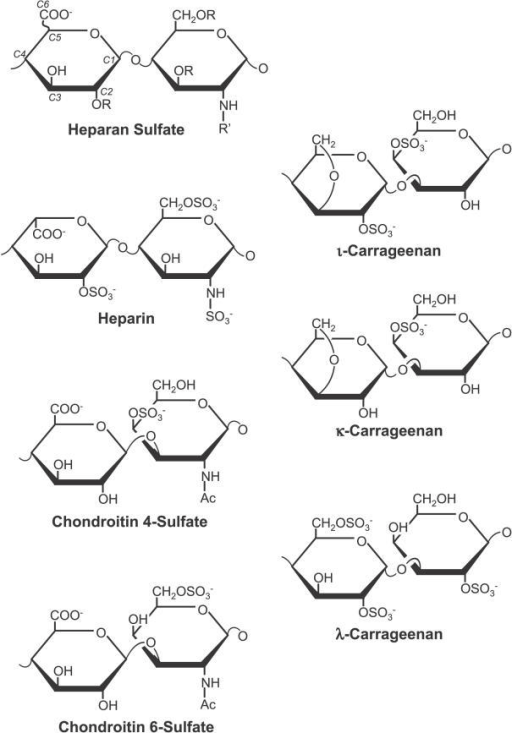 Polysaccharide StructuresIdealized average structures o