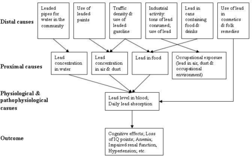 Causal web for chronic exposure to lead (reproduced with