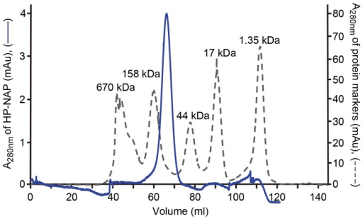 Gel-filtration chromatographic analysis of recombinant