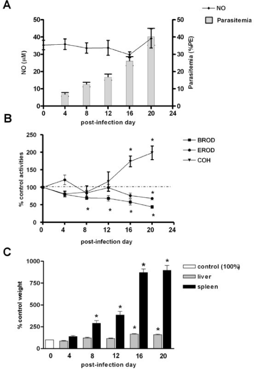 Figure 1:Up- and down-modulation of liver cytochrome P450