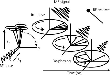 Schematic diagram showing behaviour of hydrogen nuclei
