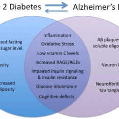 Venn Diagram Type 1 And 2 Diabetes Class For Library Management System In Uml Shared Distinct Symptoms Of Alz Open I Alzheimer S Disease Ad