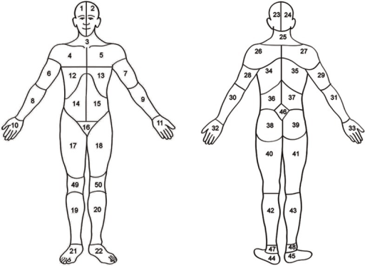 Body map.Head (area 1, 2, 23, or 24); neck (area 3 or 2