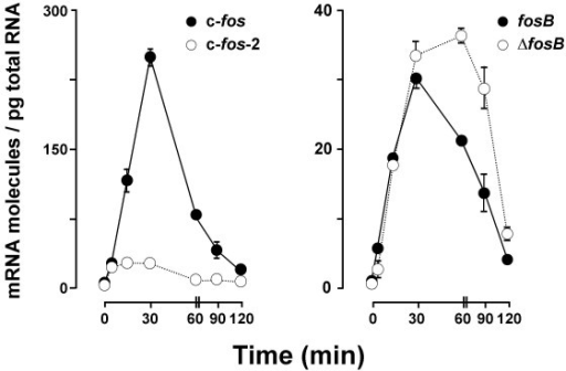 Time-course of c-fos (left) and fosB (right) transcript