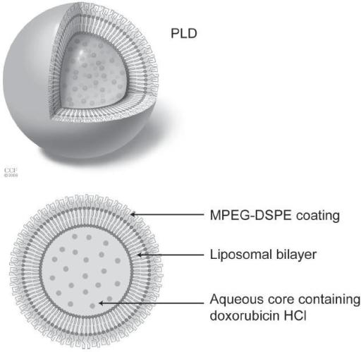 Pegylated liposomal doxorubicin (PLD) molecule. Reprint | Open-i