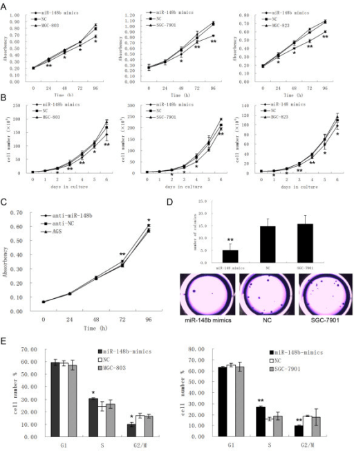 MiR-148b inhibits cell proliferation in vitro. (A), MTT