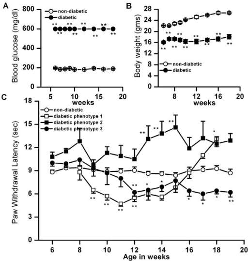 Changes in blood glucose level, body weight and thermal