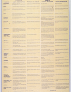 cp  epredominantly yellow poster with blue lettering title at top of also child day care center communicable disease chart open  rh openimh