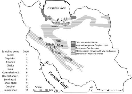 Figure 1:Genetic structure of Leptopilina boulardi